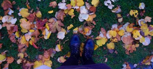 November och kvinnoförtryck